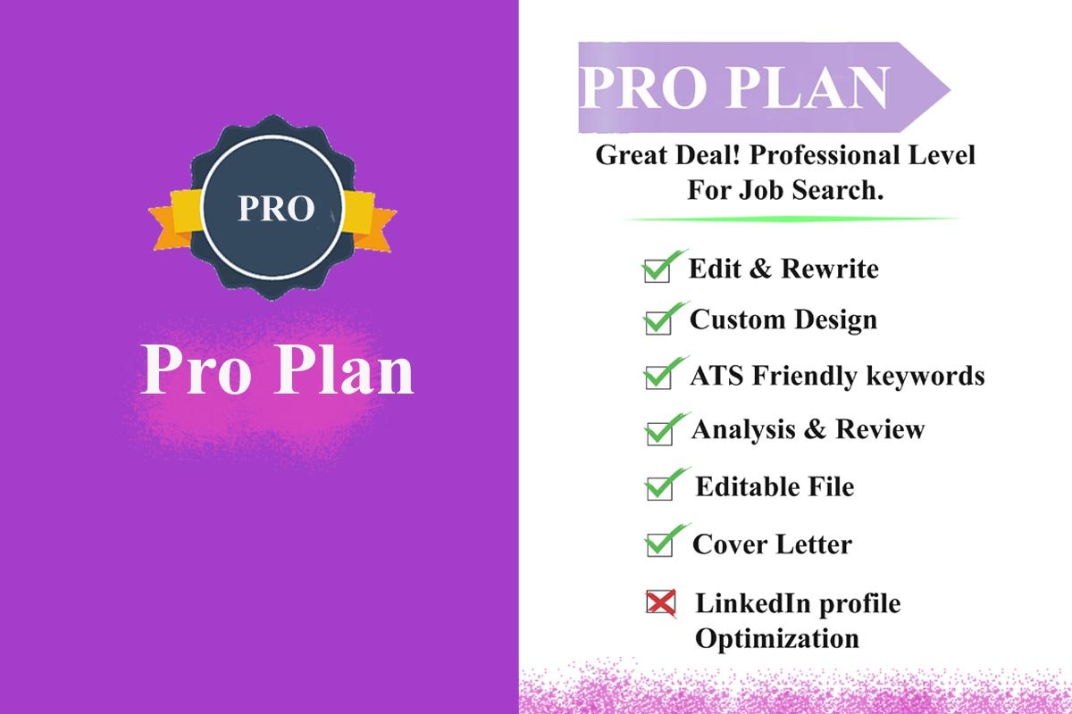 Best Professional Resume Cv Cover Letter Writing Services